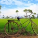 Holidays and Tours in Cambodia